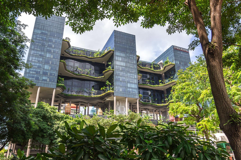 одно фото зданий в сингапуре так